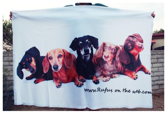 ROTW Blanket | September 2013.  Photo by: Johnny Ortez-Tibbels ©
