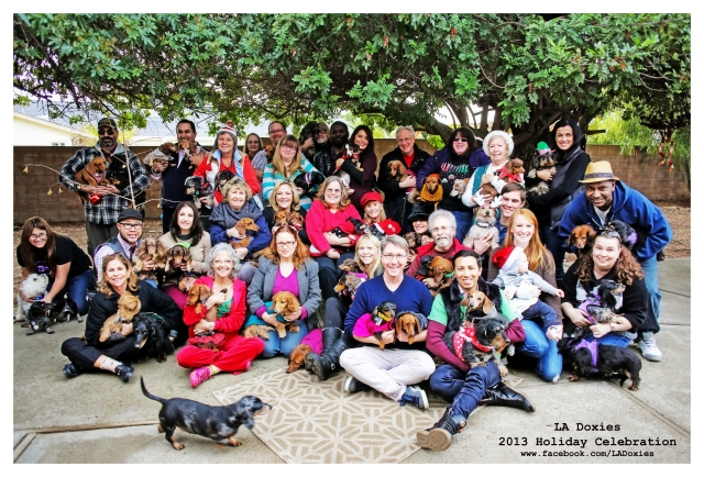 LA Doxies' 8th Annual Holiday Celebration | December 2013.