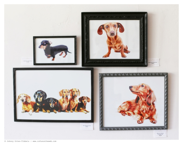 Small Works of Dachshund Art Prices $150-$250 | June 2014.  Photo by: Johnny Ortez-Tibbels ©