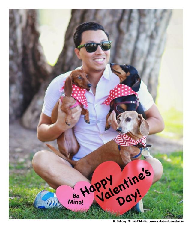Valentine's Day Celebration | February 2015.  Photo by: Johnny Ortez-Tibbels ©