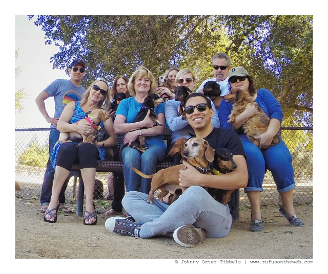 Ojai Doxies Monthly Meetup | March 2015.  Photo by: Johnny Ortez-Tibbels ©