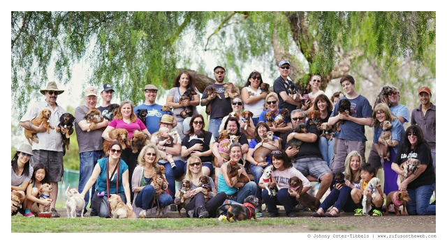 LA Doxies Monthly Meetup | March 2015.  Photo by: Johnny Ortez-Tibbels ©