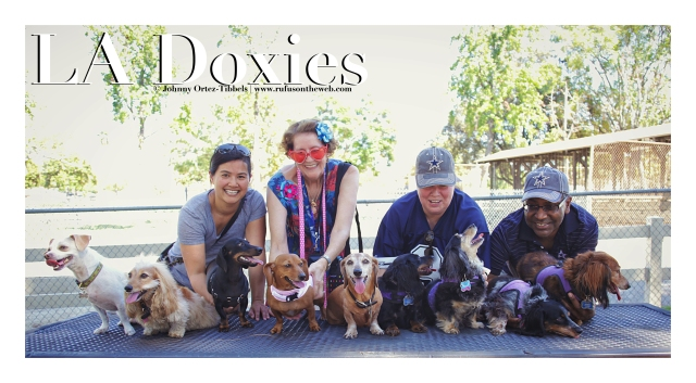 LA Doxies' Monthly Meetup | September 2012.  Photo by: Johnny Ortez-Tibbels ©