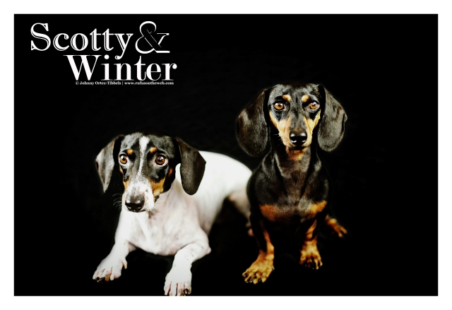 Scotty & Winter | September 2012. Photo by: Johnny Ortez-Tibbels ©