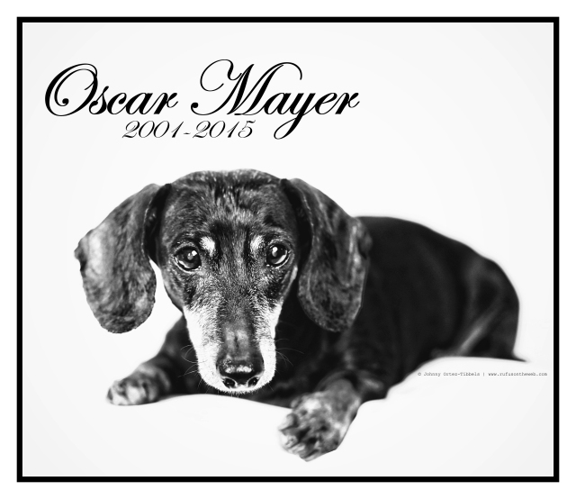 Oscar Mayer Tribute | September 2015.  Photo by: Johnny Ortez-Tibbels ©