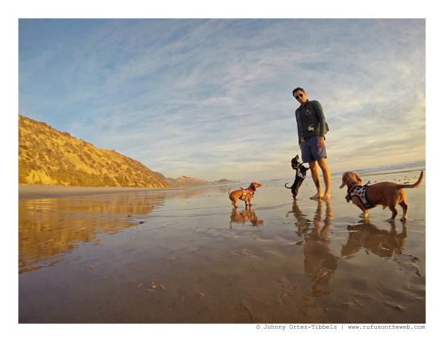 Dachshunds & their human on the beach at sunset | December 2015. Photo by: Johnny Ortez-Tibbels ©
