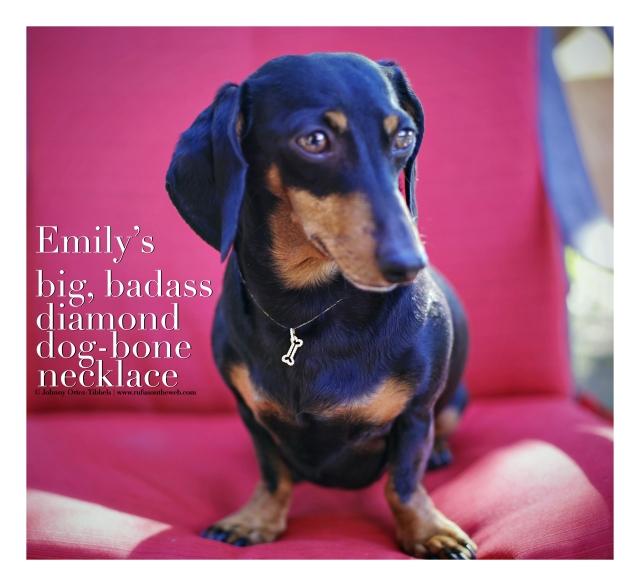 Emily's big, badass diamond dog-bone necklace | February 2016. Photo by: Johnny Ortez-Tibbels ©