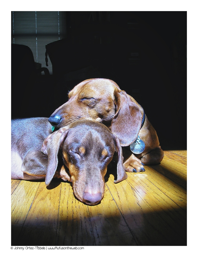 Rufus & Benny