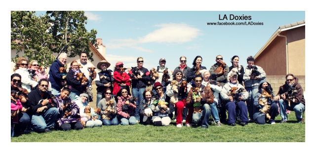LA Doxies Meetup Group