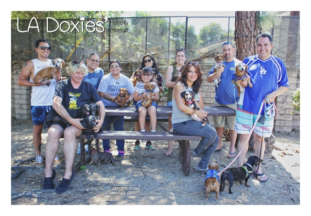 LA Doxies' May Meetup